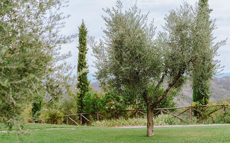 Our Philosophy Le Lappe Relais in Tuscany