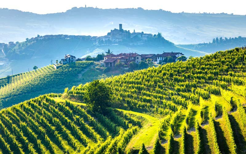 Le Lappe Relais Wine Tour in Tuscany